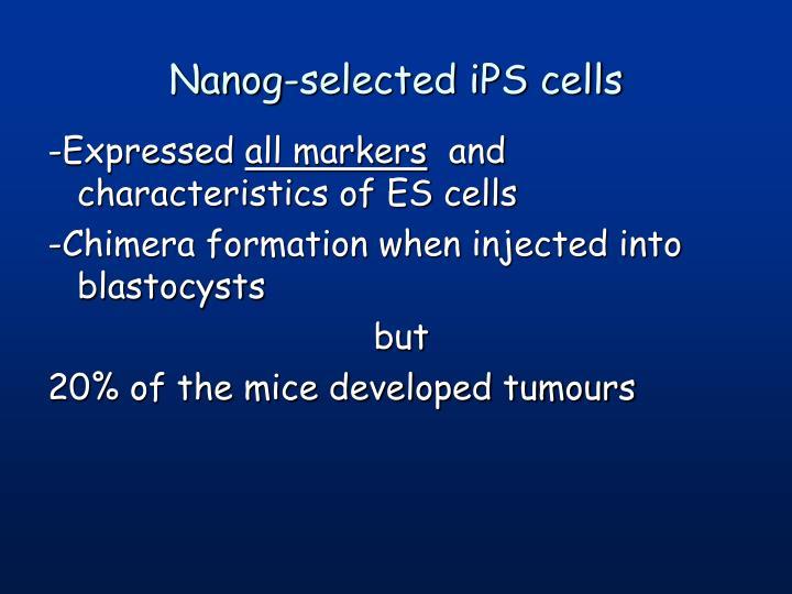 Nanog-selected iPS cells