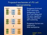 proposed mechanism of ips cell reprogramming