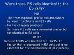 were these ips cells identical to the es cells