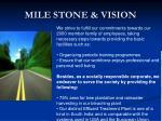 mile stone vision