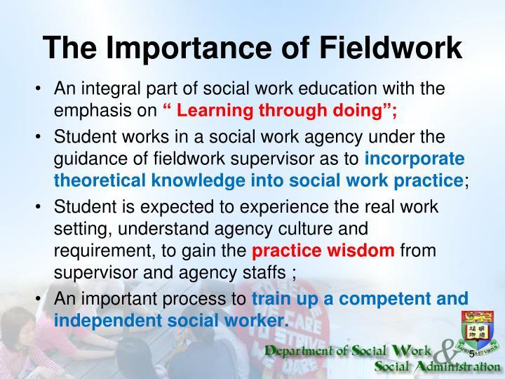 The Importance of Fieldwork