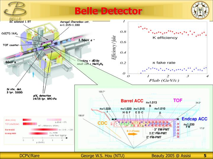 Belle Detector