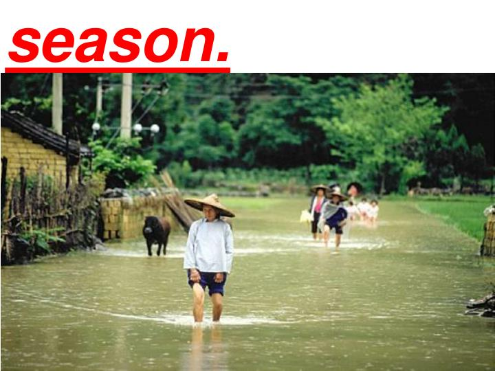 season.