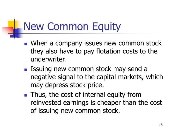 New Common Equity