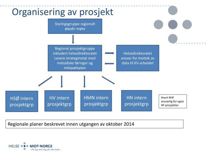 Organisering av prosjekt