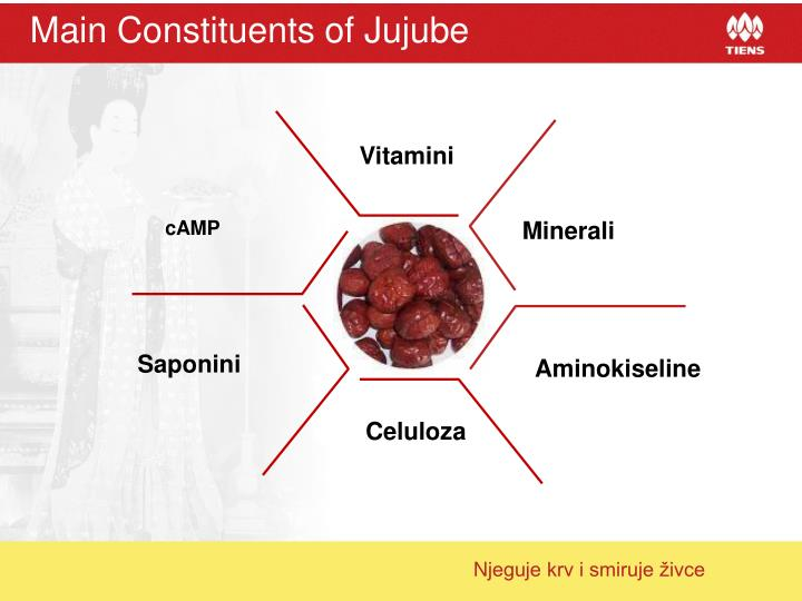 Main Constituents of Jujube