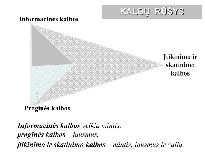 Informacinės kalbos
