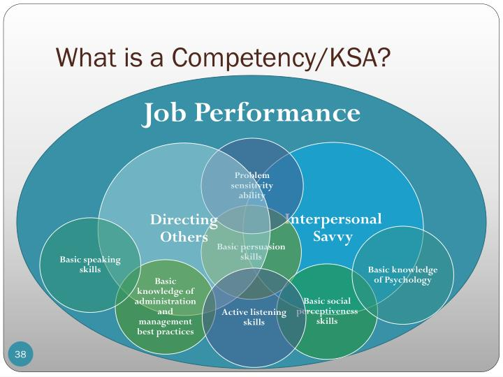 What is a Competency/KSA?