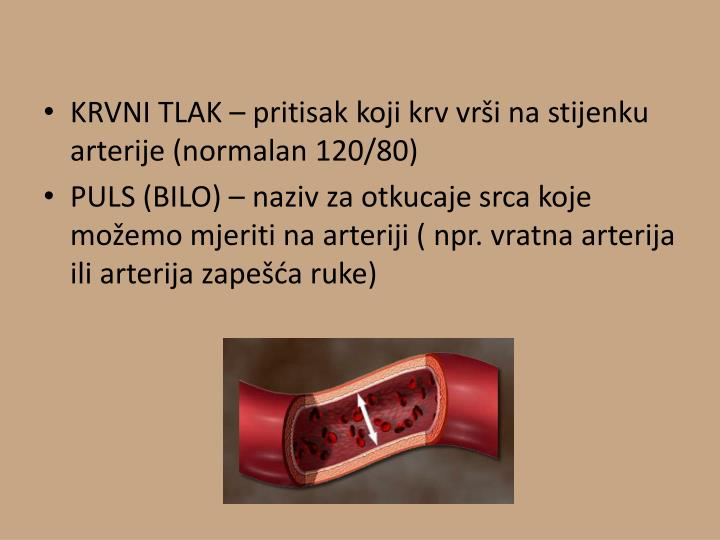 KRVNI TLAK – pritisak koji krv vrši na stijenku arterije (normalan 120/80)