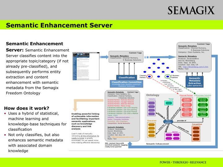 Semantic Enhancement Server