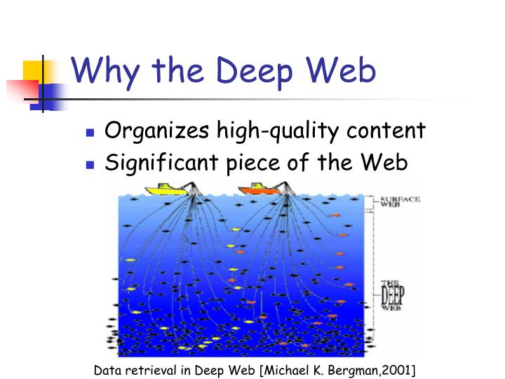 Data retrieval in Deep Web [