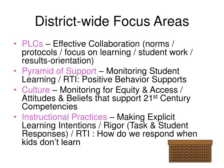District-wide Focus Areas
