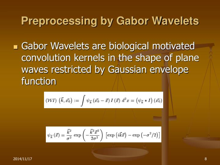 Preprocessing by Gabor Wavelets