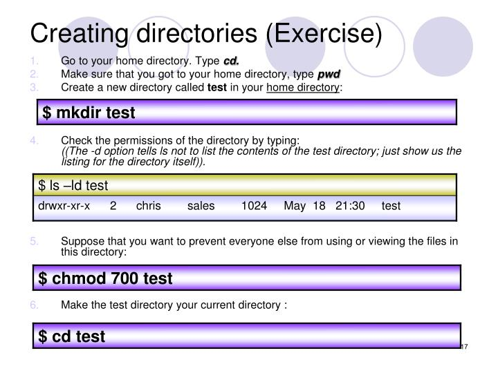 Creating directories (Exercise)