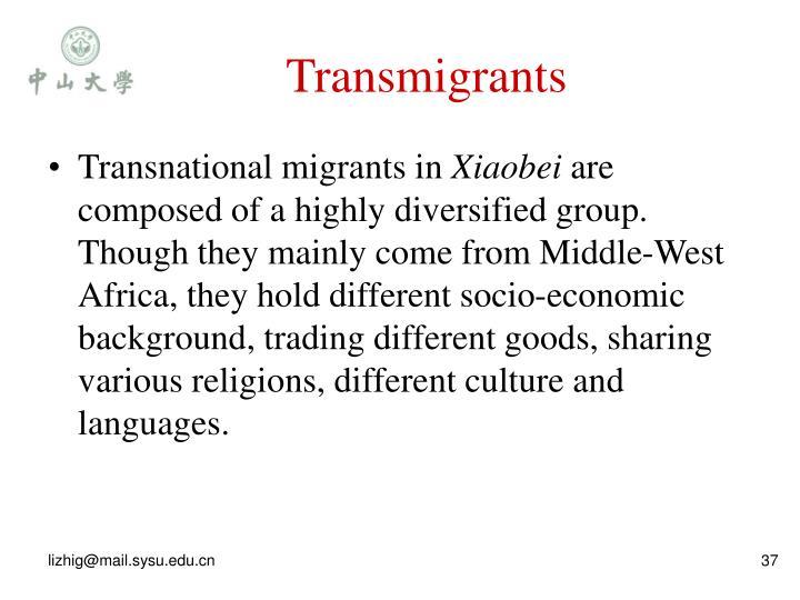 Transmigrants