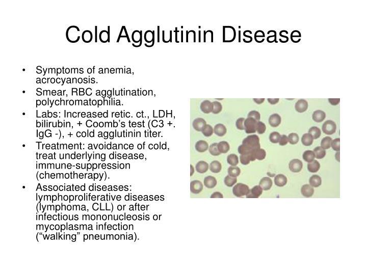 Cold Agglutinin Disease