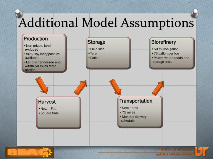 Additional Model Assumptions
