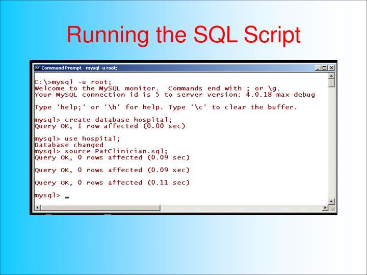 Running the SQL Script