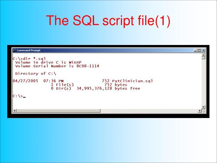 The SQL script file(1)