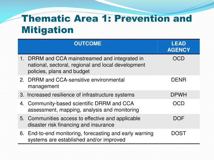 Thematic Area 1: Prevention