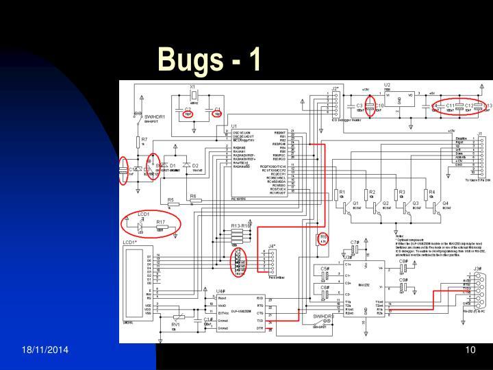 Bugs - 1