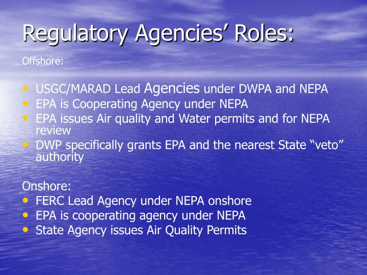 Regulatory Agencies' Roles: