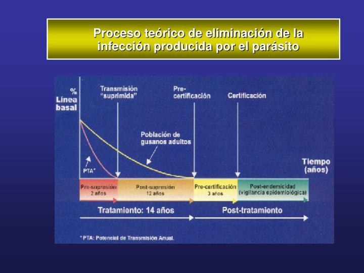 Proceso teórico de eliminación de la infección producida por el par