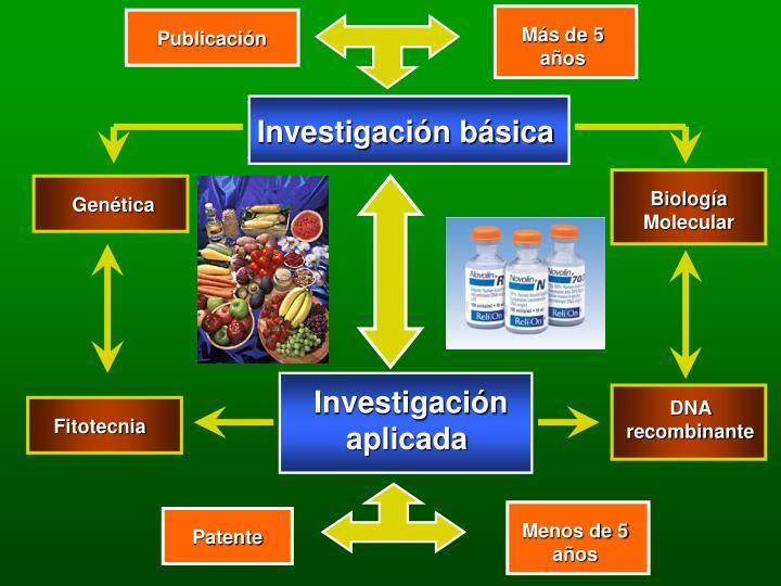 Investigación básica