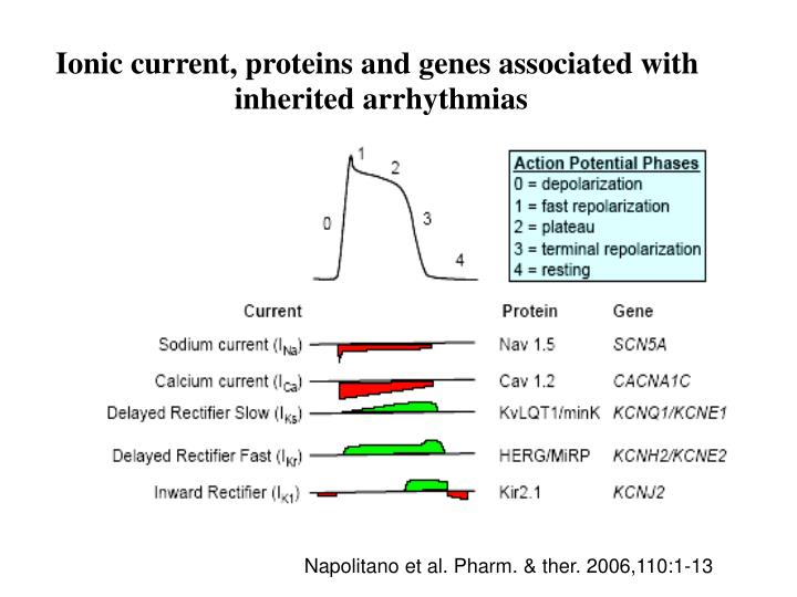 Ionic current, proteins and genes associated with