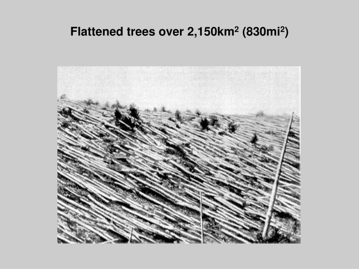 Flattened trees over 2,150km