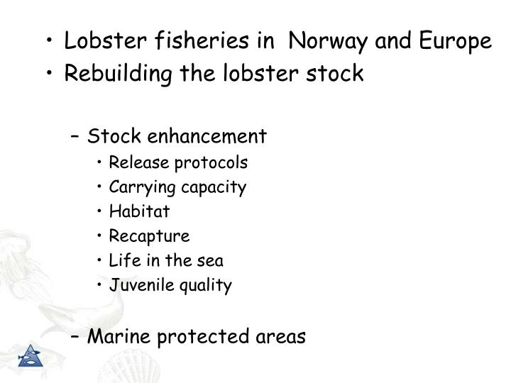 Lobster fisheries in  Norway and Europe