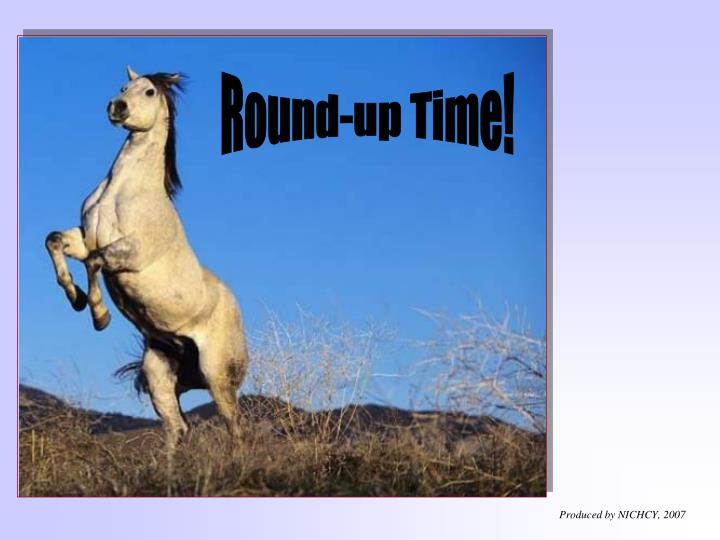Round-up Time!