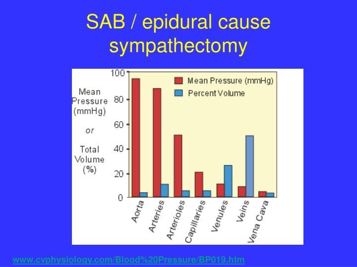 SAB / epidural cause
