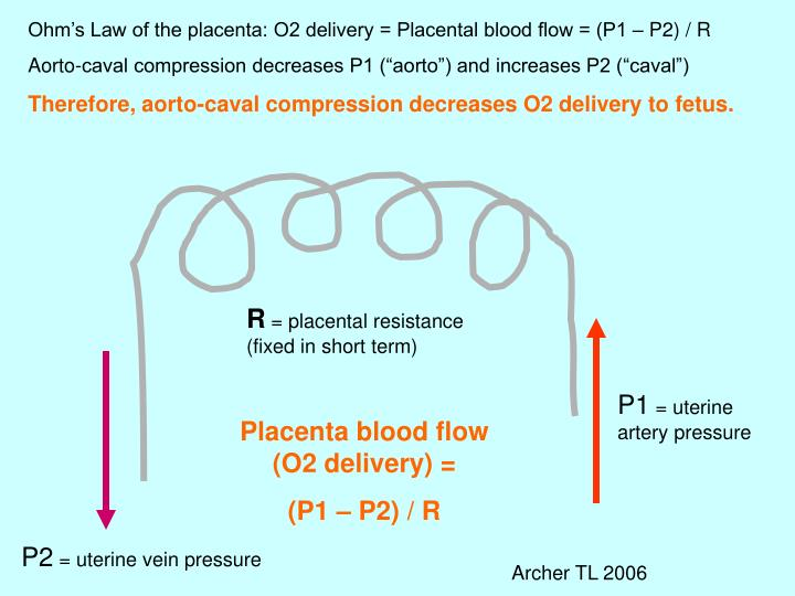 Ohm's Law of the placenta: O2 delivery = Placental blood flow = (P1 – P2) / R