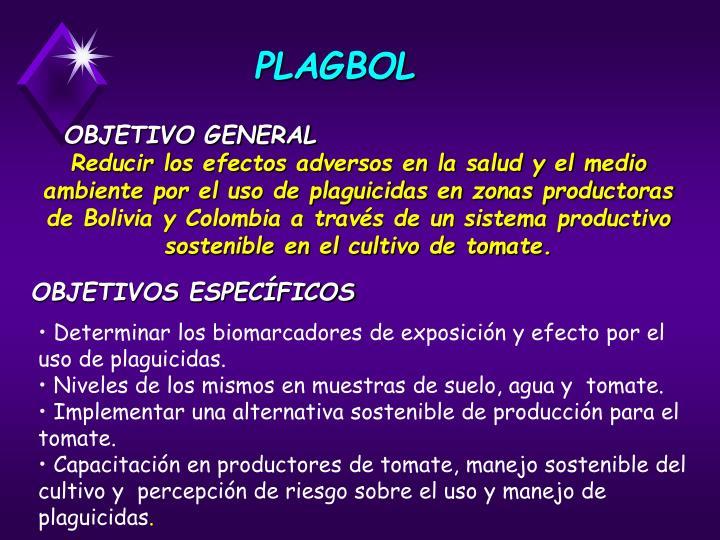 PLAGBOL