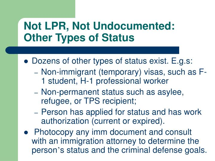 Not LPR, Not Undocumented: