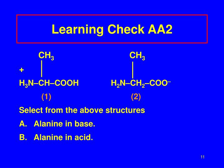 Learning Check AA2