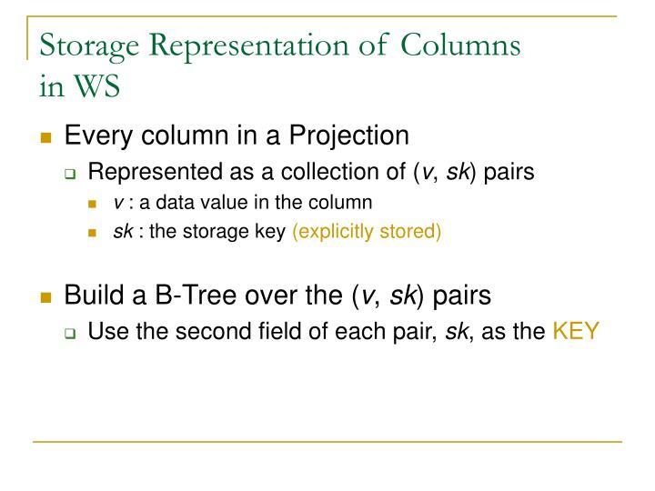 Storage Representation of Columns