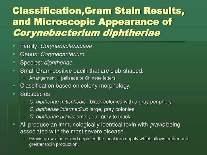 Classification,Gram Stain Results, and Microscopic Appearance of