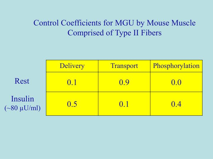 Control Coefficients for MGU by Mouse Muscle Comprised of Type II Fibers