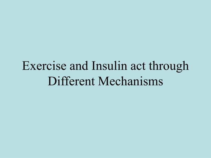 Exercise and Insulin act through Different Mechanisms