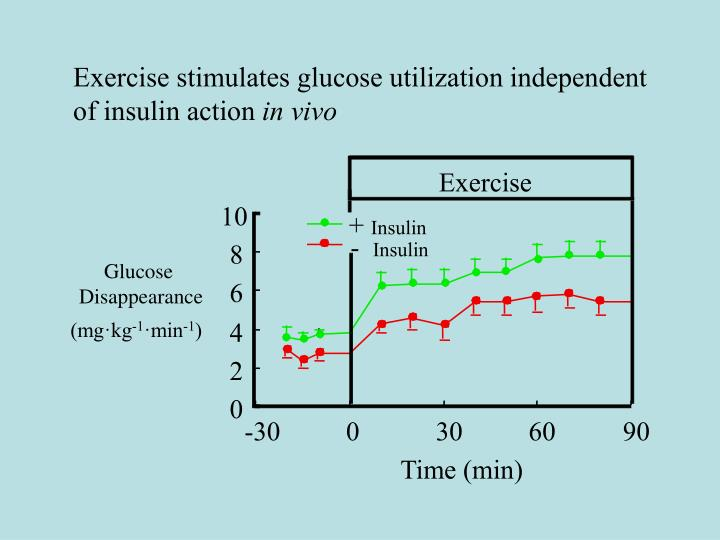 Exercise stimulates glucose utilization independent of insulin action