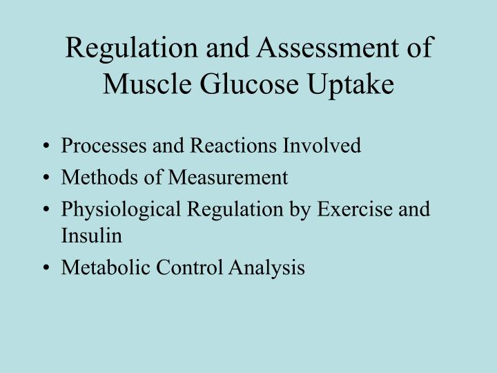 Regulation and assessment of muscle glucose uptake