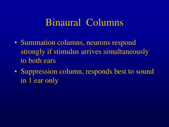 Binaural  Columns