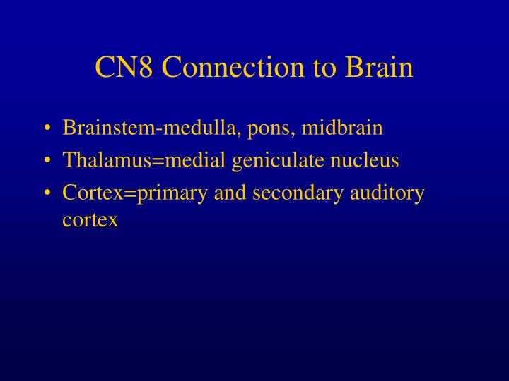 CN8 Connection to Brain