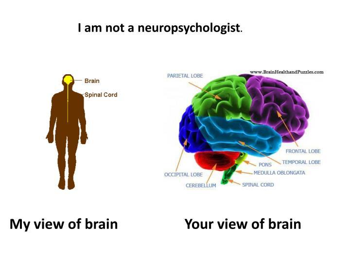 I am not a neuropsychologist