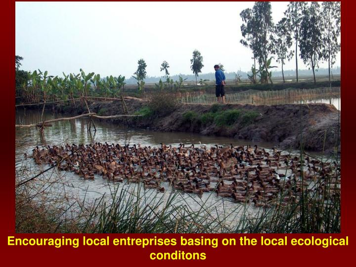 Encouraging local entreprises basing on the local ecological conditons