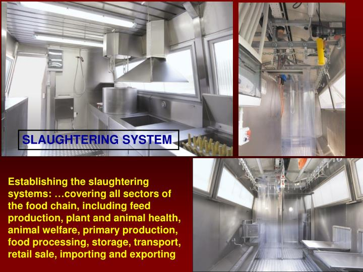 SLAUGHTERING SYSTEM