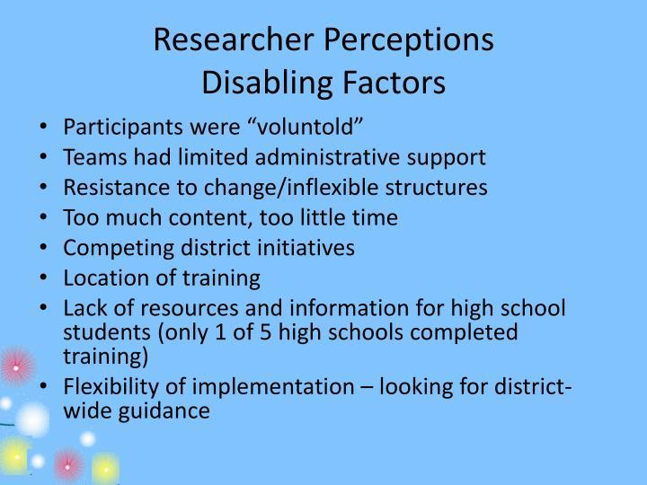 Researcher Perceptions
