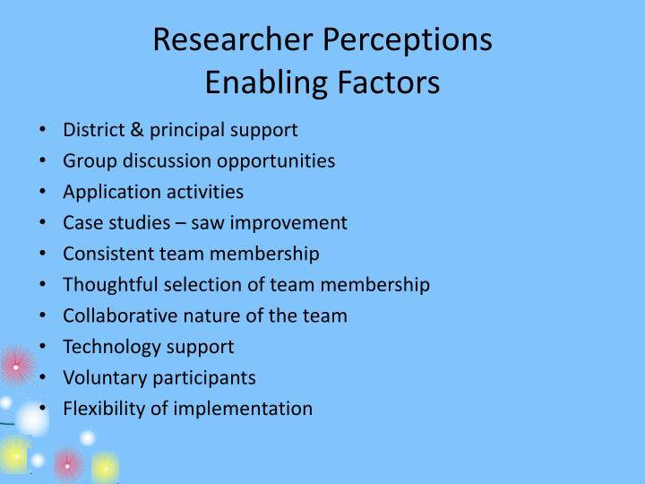 Researcher Perceptions